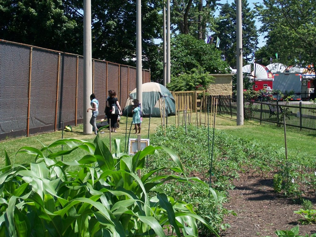 Garden JPG Image
